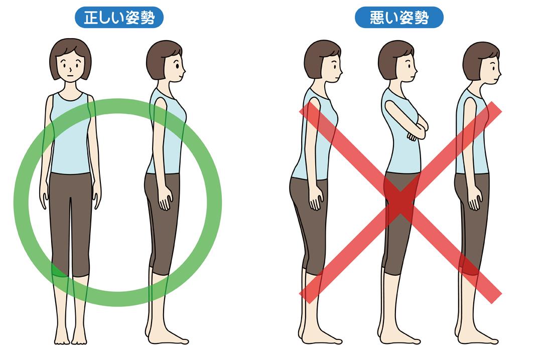 腰痛と姿勢の関係について|腰痛予防は姿勢改善から! | TENTIAL ...